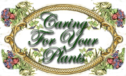 Caring-for-your-plants