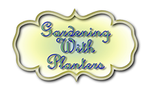 Gardening-with-planters