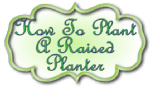 How-to-plant-a-raised-planter
