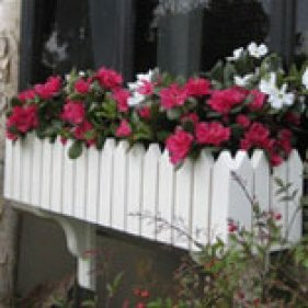buckingham-windowbox