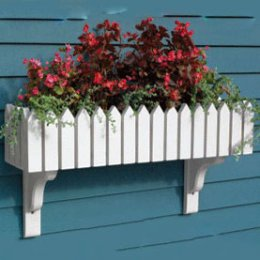 buckingham-windowbox...