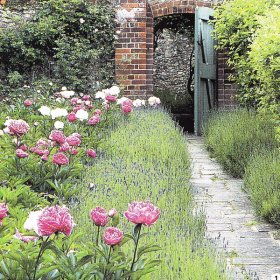 The Cottage Garden Articles Related To The Cottage Garden